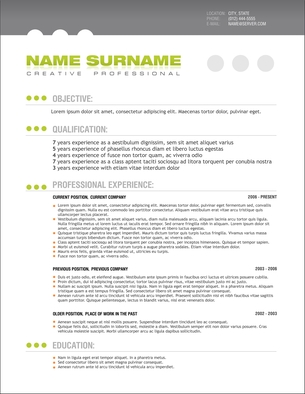 resume writing resume editing danville san ramon